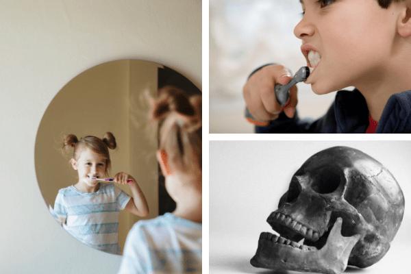 Guardar los dientes de leche de los niños